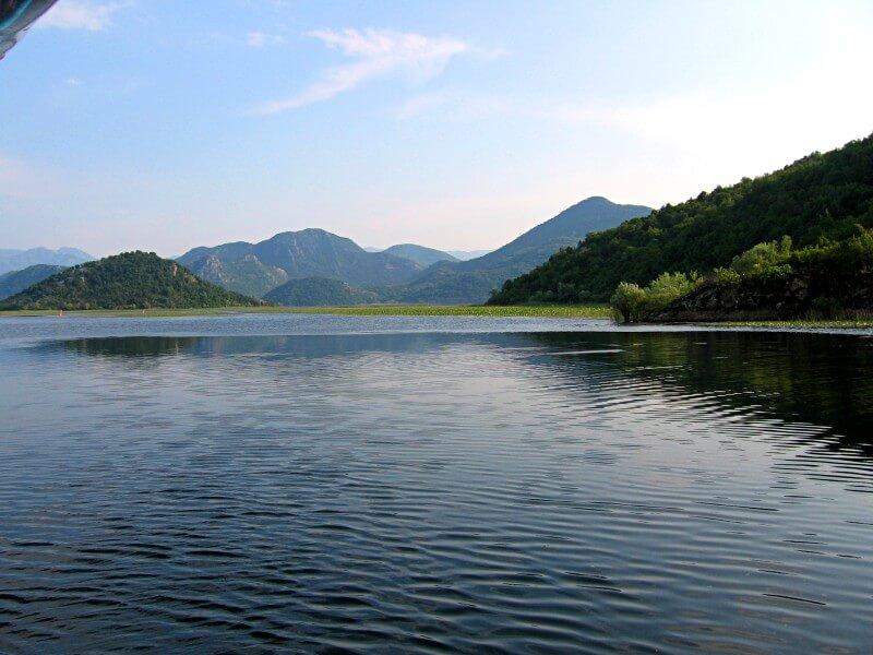 Скадарское озеро 4