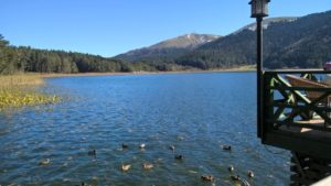 озеро в провинции Болу Турция