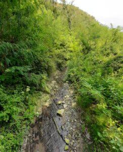ручей на территории Весны